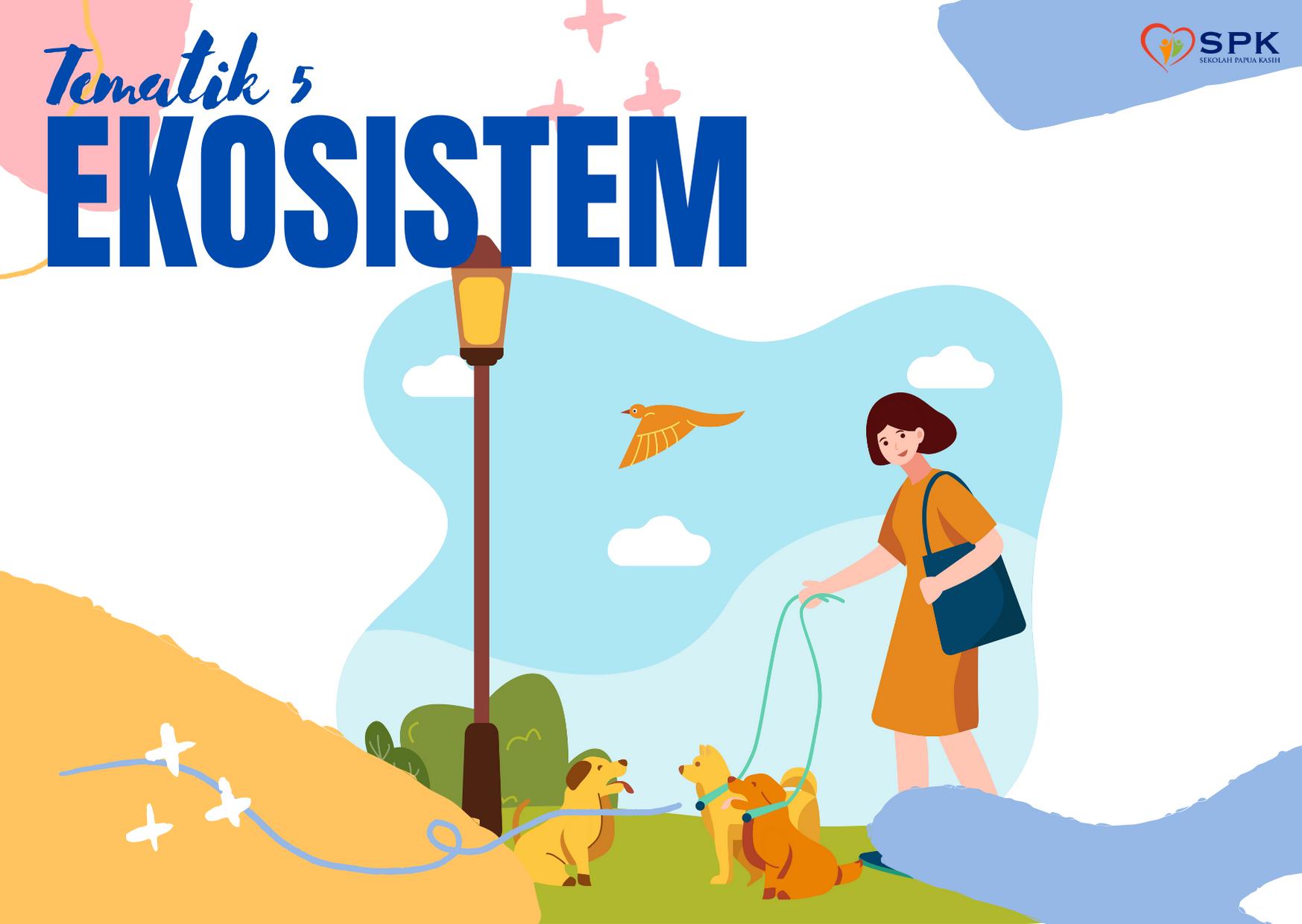 T5 Ekosistem